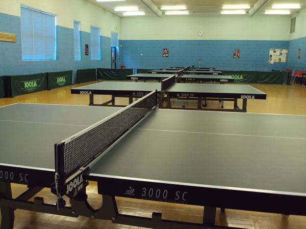 table-tennis-row-high